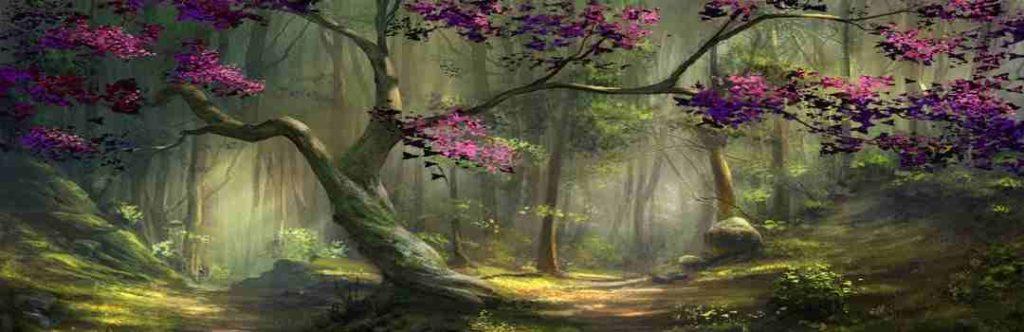 красивые деревья убийцы таро джунга