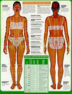 меридианы по телу всему