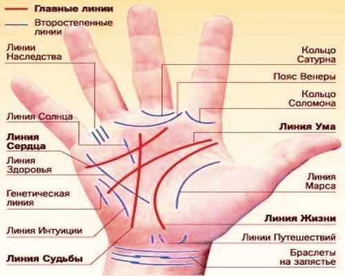 описание линий на руке хиромантия таро Джунга